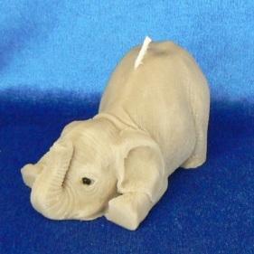 Elefant auf Schnauz