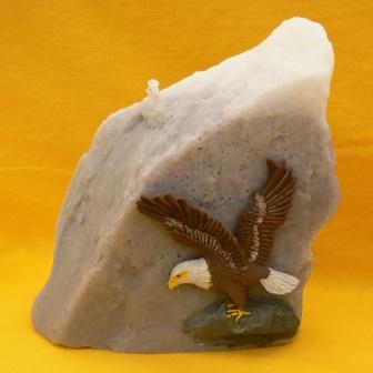 Weisskopfseeadler (3